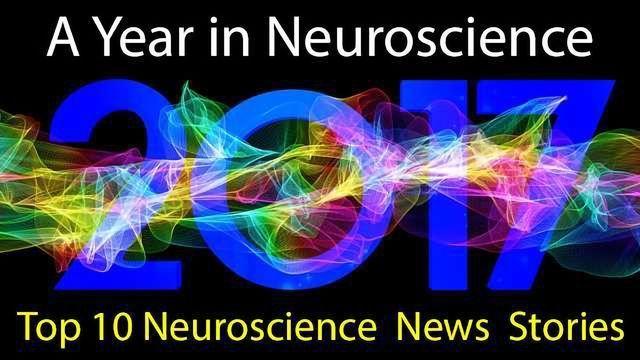 Top 10 Neuroscience News Stories of 2017
