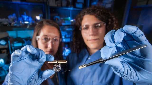 'Brain-on-a-Chip' Tests Effects of Biological and Chemical Agents