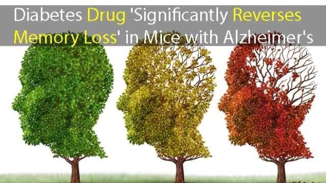 Potential New Treatment for Alzheimer's: Diabetes Drug Reverses Memory Loss
