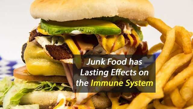Junk Food Has Lasting Effects on the Immune System