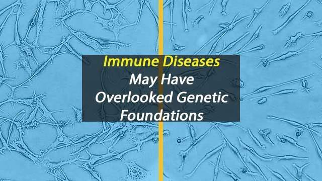 Hidden Genetic Effects Behind Immune Diseases May be Missed