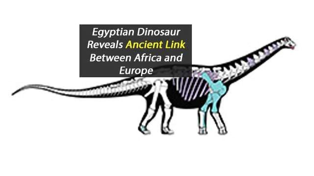 Dinosaur Discovery Helps Scientist Fill in the Missing Links