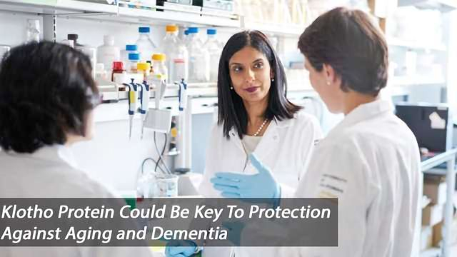 Could Klotho Protein Prevent Aging And Cognitive Decline in Dementia?