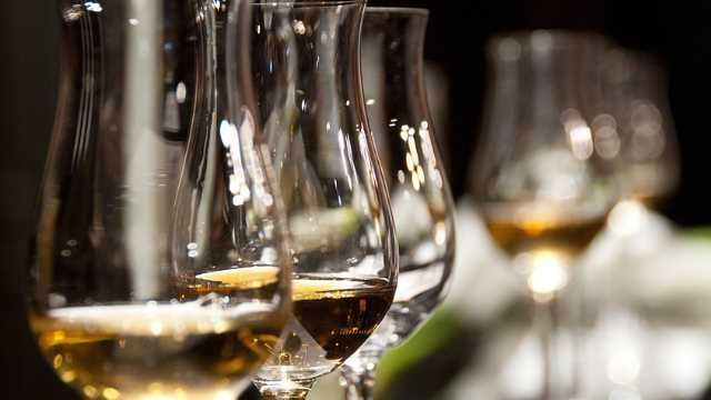 Low Levels of Alcohol Good for the Brain, According to a New Study
