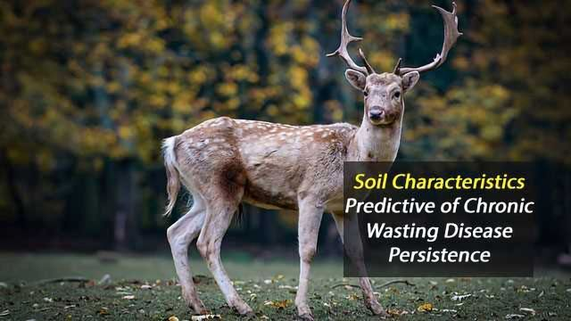 Soil Characteristics Predictive For Chronic Wasting Disease Persistence