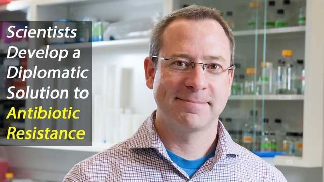 Destabilizing Bacterial Communication a Diplomatic Solution in the War on Antibiotic Resistance