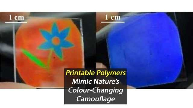 Printable Polymer That Mimics Nature's Colour Changing Abilities