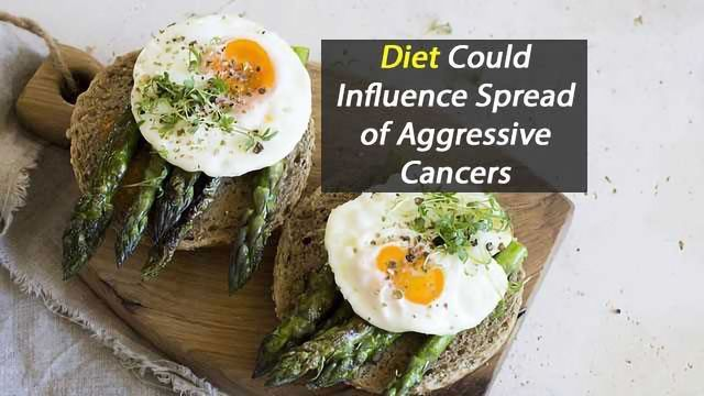 Limiting Dietary Asparagine Could Reduce Cancer Spread