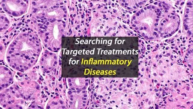 Improved Understanding of Inflammatory Response Pathways Offers Hope For Inflammatory Disease Sufferers