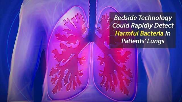 Lung Probe Speeds Detection of Infections