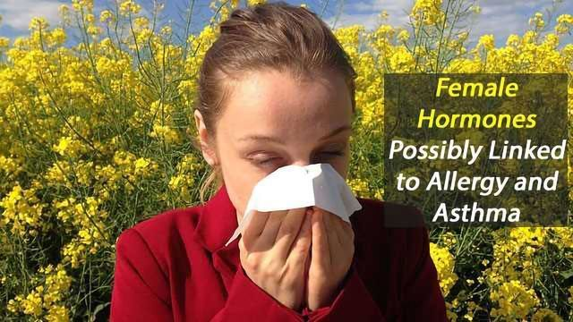 Allergies and Asthma Possibly Linked to Female Hormones