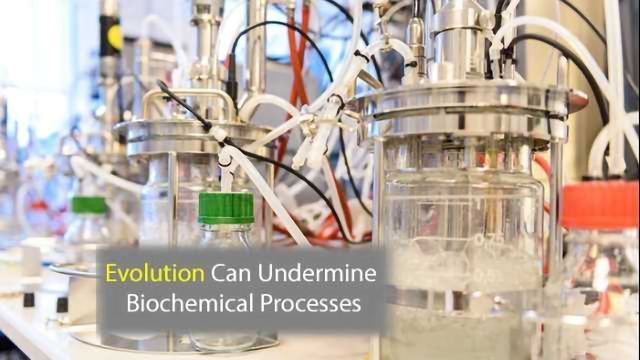 Sequencing Shows How Evolution Can Undermine Bioprocess Commercialization