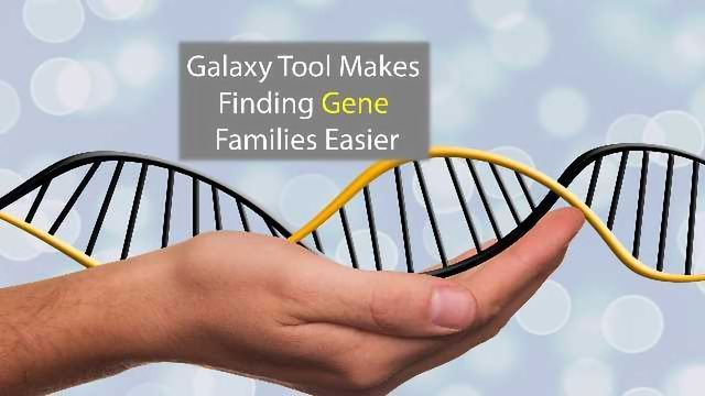 Family Gathering: Galaxy Program Makes Grouping Genes Easier