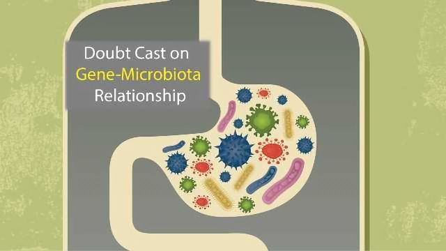 Study Casts Doubt on Gut Microbiota's Genetic Influence