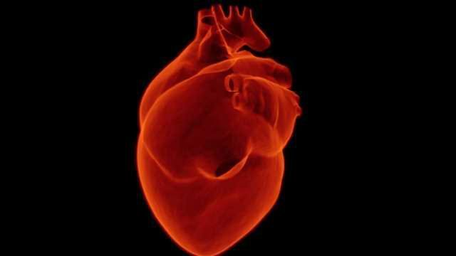 Unlocking a Cell's Potential to Regenerate the Heart