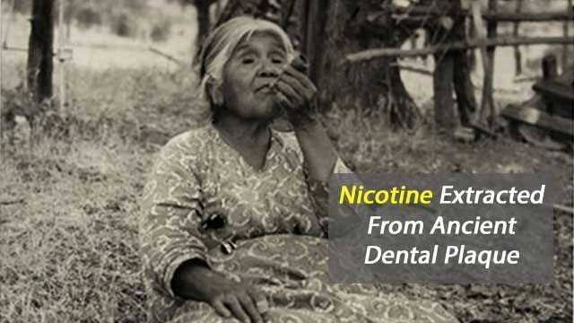Nicotine Extracted From Ancient Dental Plaque