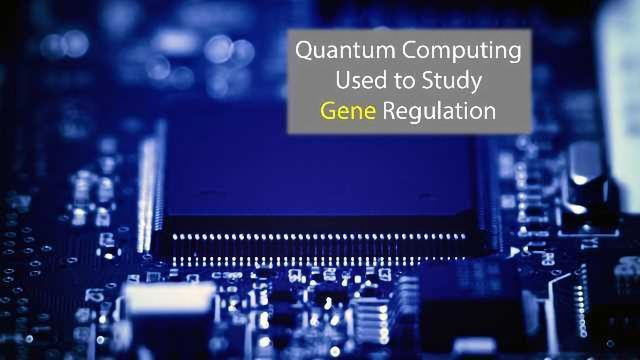 The Power of Quantum Computing Harnessed for Gene Study