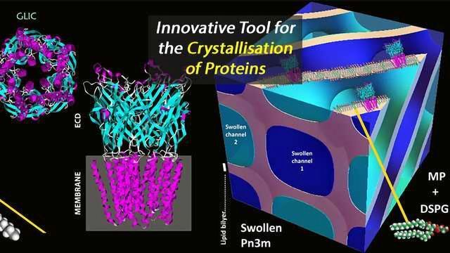 Determining Structures For Large Proteins is Now Easier