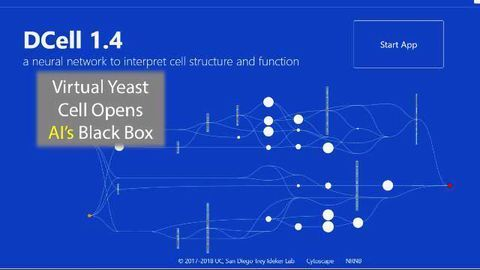 This Virtual Yeast Cell Could Open Up The Black Box Of Artificial Intelligence