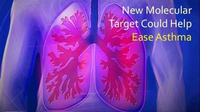 Ease the Wheeze: New Therapeutic Target for Asthma
