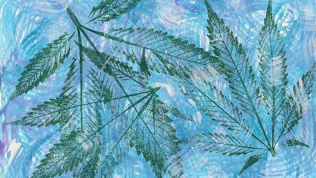 Chemotyping: Classifying cannabis strains by chemical composition