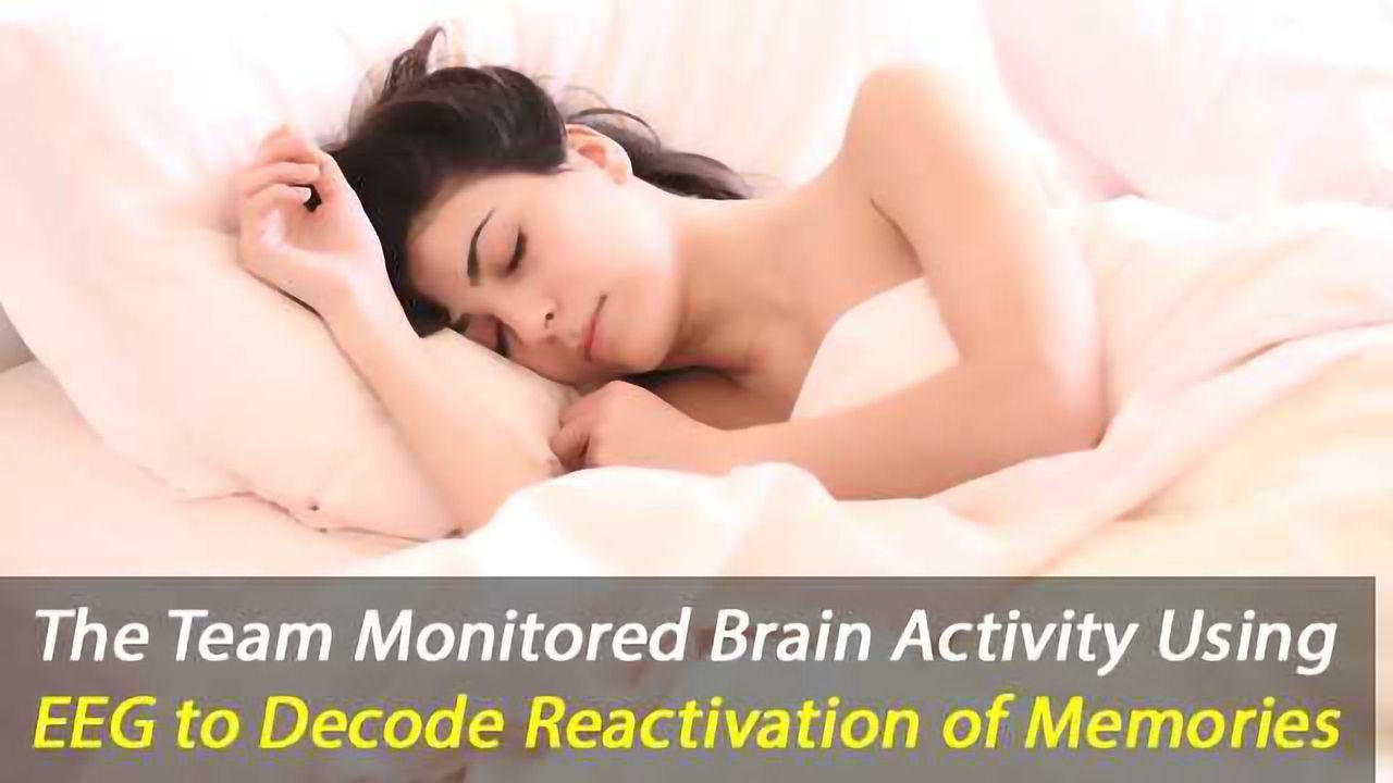 Scientists Decode Memories From Sleep Brain Waves