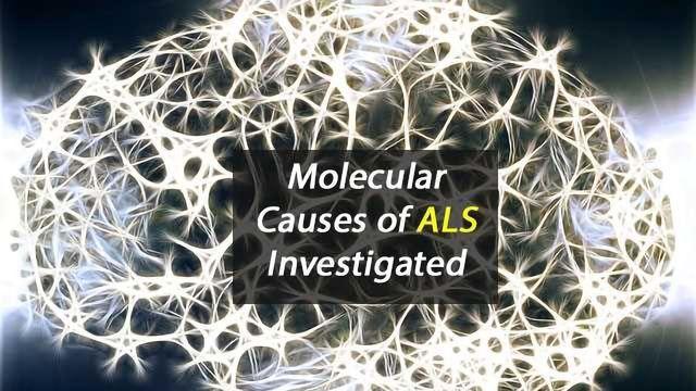 Understanding 'Disease Mechanisms' of ALS