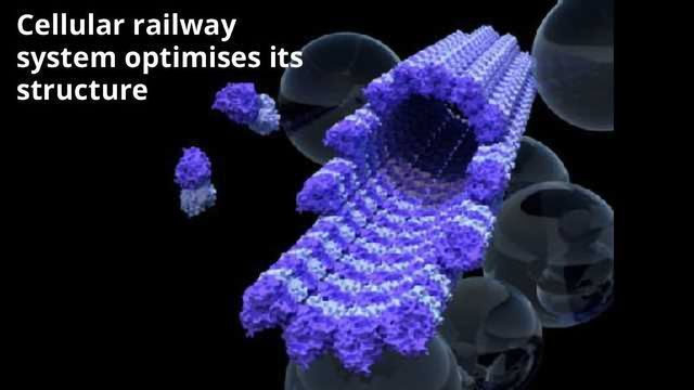 How To Build A Better Railway - In (Almost) Every Cell In Your Body