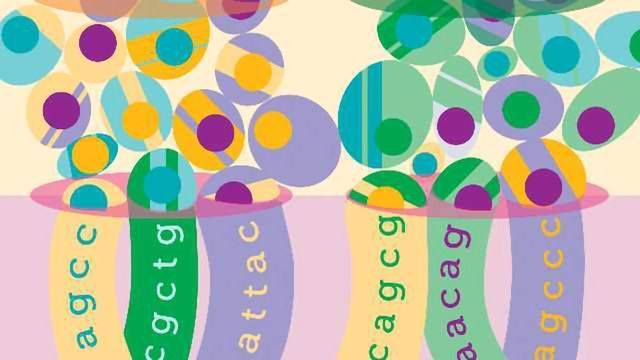 The DNA Shuffle: Barcoding Trick is Boost to RNA-Seq
