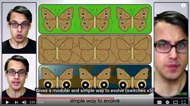 Evo-Devo (Despacito Biology Parody) - A Capella Science