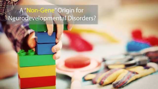 """""""Non-Gene"""" Mutations May Hold Answers to  Neurodevelopmental Disorders"""