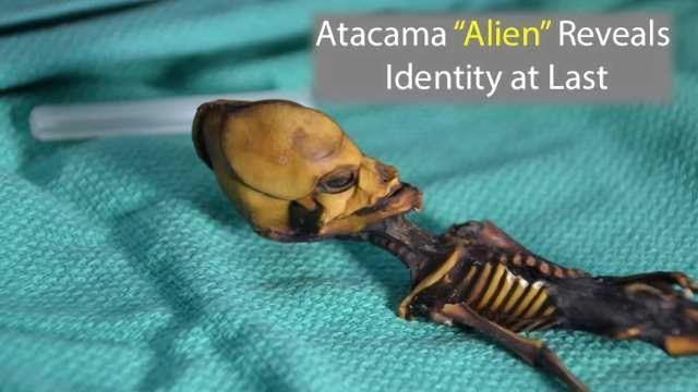 "Genetic Identity of Atacama ""Alien"" Skeleton Revealed"
