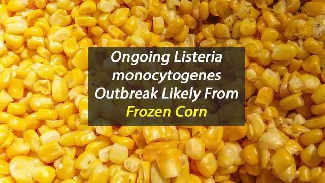 Frozen Corn Likely Source of Ongoing Listeria monocytogenes Outbreak