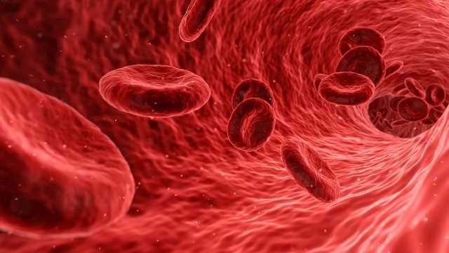 Blood Tests for Brain Diseases