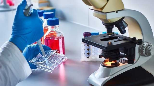 6 Tips for Optimal Transfection