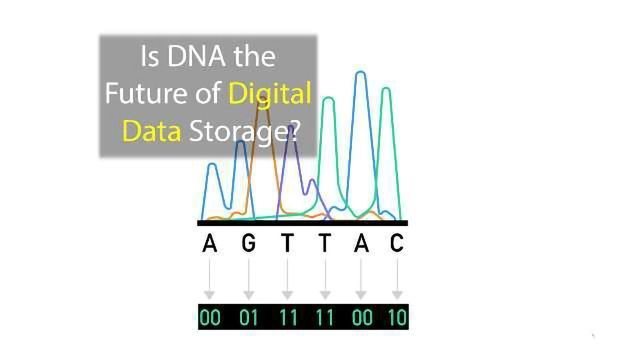 Is DNA the Future of Digital Data Storage?