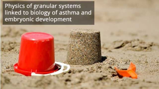 Sandcastles and Surprising Origins of Basic Cellular Functions