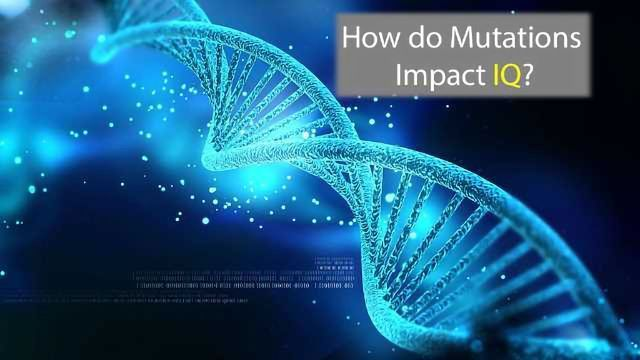Predicting Mutations' Impact on IQ