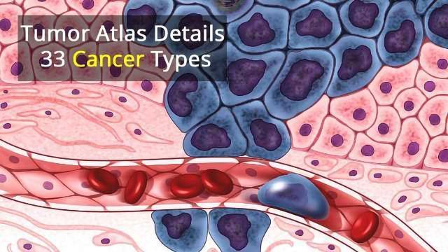 $300 Million Cancer Atlas Exposes Tumor Genomes