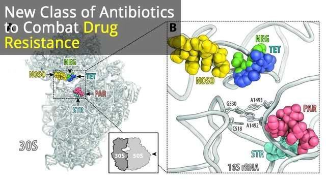 New Class of Antibiotics
