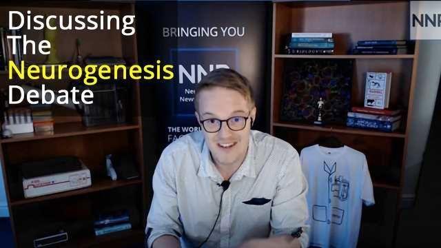 Discussing the Neurogenesis Debate