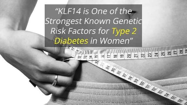 Gene Variant Controls Belly Fat Distribution and Diabetes Risk in Women