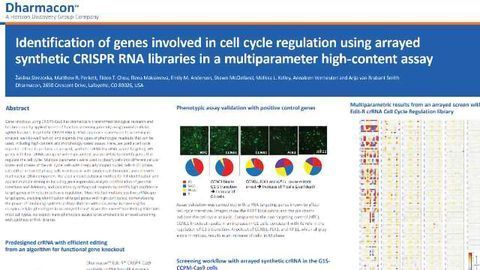 Identification of genes involved in cell cycle regulation using arrayed synthetic CRISPR RNA libraries in a multiparameter high-content assay