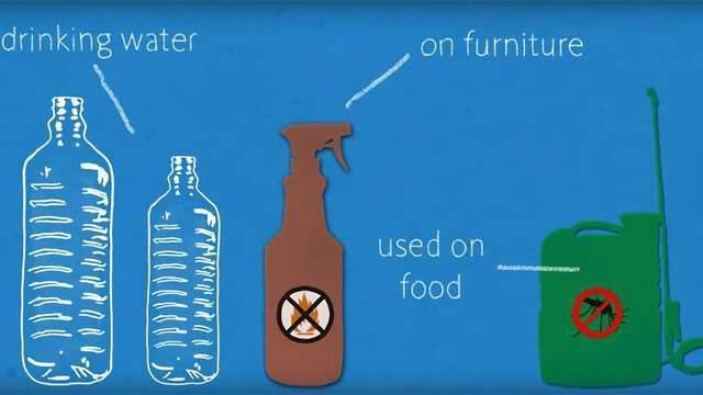 How Do Our Bodies Fight Off Dangerous Chemicals?