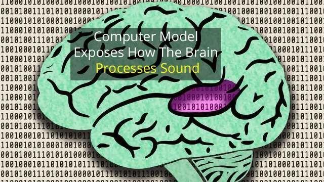 Neural Computer Hears Like Humans