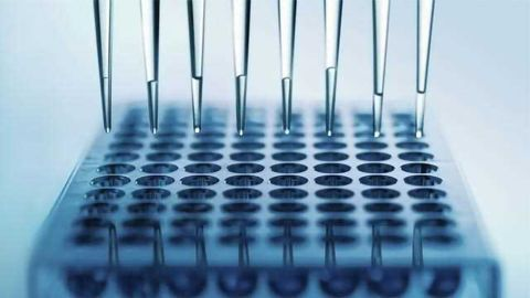 Phenotypic versus Target-based Screening for Drug Discovery