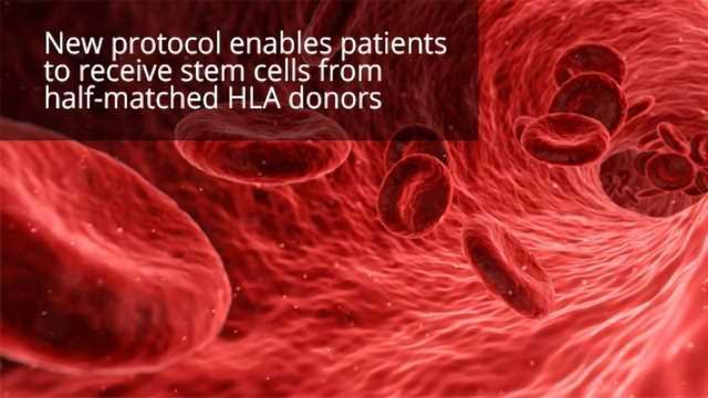 'Incompatible' Donor Stem Cells Cure Adult Sickle Cell Patients