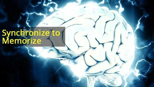 Working Memory Load Limit Affected by Brain Coupling, Synchrony