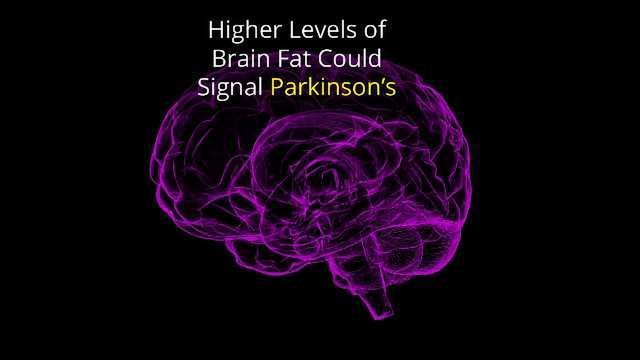 A Fatty Brain Could Be a Sign of Parkinson's