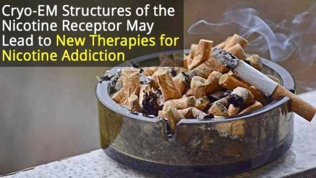Nicotine Receptor Blueprints May Help Design Drugs for Addiction